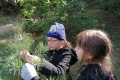 ucznowie w lesie