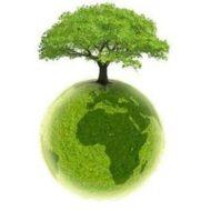 obrazek przedstawiający drzewo na planecie