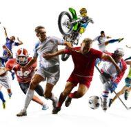 Więcej o: Projekt sportowy